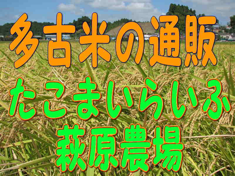たこまいらいふ萩原農場