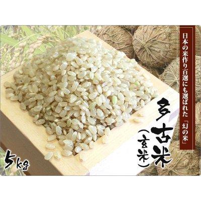 画像1: 平成29年産 特別栽培米コシヒカリ多古米(玄米)5kg