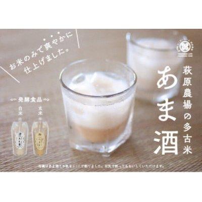 画像1: 【白米・玄米】 無添加 多古米あま酒飲み比べセット(白米500ml×2本・玄米500ml×2本)濃縮タイプ