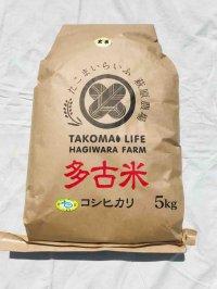玄米5kg 令和2年産 新米 特別栽培米コシヒカリ多古米(玄米)5kg