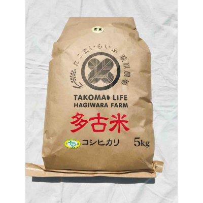 画像1: 玄米5kg 令和2年産 新米 特別栽培米コシヒカリ多古米(玄米)5kg